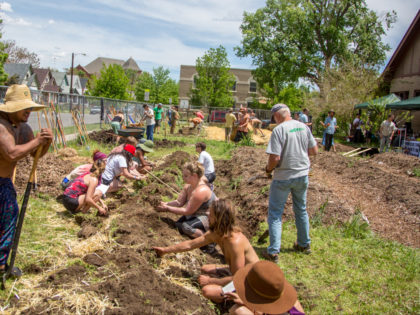 Community members participate in Action Days, one-day events designed to co-create a sustainable and regenerative world. Support Permaculture Action Network and our planet's future here!